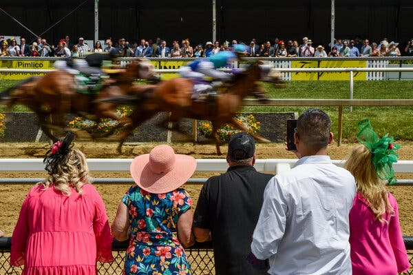 Spectators cheering during the races at Pimlico Race Course before the Preakness Stakes on Saturday.